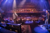 Widespread_Panic_-_Photo_by_Josh_Timmermans_-_0664.jpg
